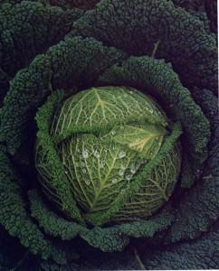 Ordine frutta e verdura Mengozzi - Scade giovedi 13 Febbraio 2014 ore 12.00 1