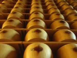 Nuovo Ordine Parmigiano e Latticini CiaoLatte - Scadenza Sabato 26 Marzo 2011 1